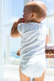 Rear view of a cute baby Royalty Free Stock Photo