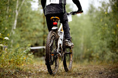 Rear view of a dirty wheel bicycle Stock Photography