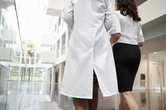 Rear View Of Doctors Talking As They Walk Through Hospital Royalty Free Stock Images