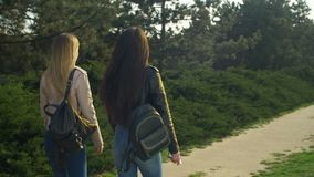 Elegant girls strolling in parkland at sunset stock video footage