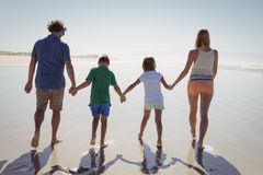 Rear view of family holding hands while walking together on shore Stock Photo