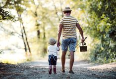 A rear view of father with a small toddler son going fishing. A rear view of father with a small toddler son walking on a path in wood, going fishing stock images