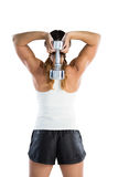 Rear view of female athlete holding dumbbell Royalty Free Stock Photo