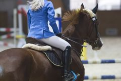 Rear view of female equestrian on the ginger stallion at show jumping competition royalty free stock photo