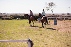 Rear view of female friends horseback riding. On field at paddock royalty free stock photography