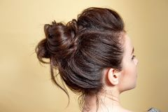 Rear view of female hairstyle volume braid. Rear view of female hairstyle middle bun with brown hair Stock Photography