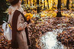 Rear view of female holding bouquet of yellow autumn maple leaves in her gloved hands. Ground covered with orange leaves royalty free stock images
