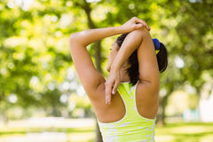 Rear view of a fit brunette stretching Royalty Free Stock Images