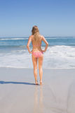 Rear view of fit woman in bikini on the beach Stock Photo
