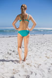 Rear view of fit woman in bikini standing on beach. On a sunny day Stock Photo