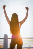 Rear view of fit woman cheering at promenade Stock Photo