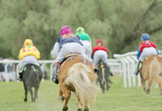 Rear view of five racing ponys Royalty Free Stock Photos
