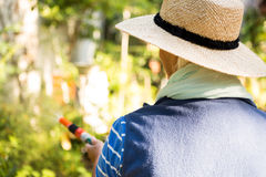 Rear view of gardener watering from hose at garden Royalty Free Stock Photos
