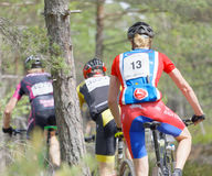 Rear view of group of mountain bike cyclists in the forest Stock Photography