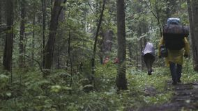 Rear view of the group of people with backpacks trekking together and climbing in forest. Stock footage. Adventure. Rear view of the group of people with stock footage