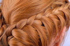 Rear view of a hairstyle royalty free stock photography