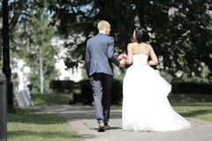 Rear view.happy couple walking in the alley of the Park. Outdoors Royalty Free Stock Photography