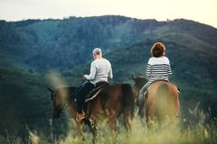 A rear view of senior couple riding horses in nature. Royalty Free Stock Photos