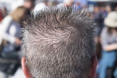 Rear view of head with spiked gray hair royalty free stock photo