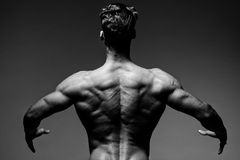 Rear view of healthy muscular young man with his arms stretched Royalty Free Stock Photo
