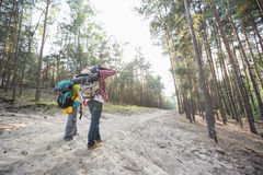 Rear view of hiking couple holding hands while walking in forest Stock Image