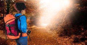 Rear view of hipster carrying backpack and holding camera while standing in forest stock photography