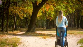 Rear view shot of young mother with baby trolley walking in autumn park. Rear view image of young mother with baby trolley walking in autumn park Stock Photos