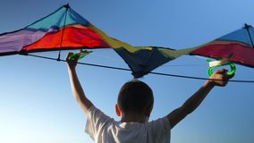 Rear view little boy white shirt raised above his head kite on background blue sky. Imaginary flying game is fun entertainment stock footage
