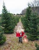 Rear view of little girl walking along fir tree alley stock photography