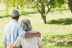 Rear view of loving mature couple at park Stock Photos