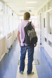 Rear view of male college student. Standing in university Royalty Free Stock Photo