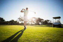 Rear view of male golfer taking shot. While standing on field Royalty Free Stock Photos