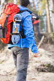 Rear view of male hiker with backpack standing in forest Stock Images