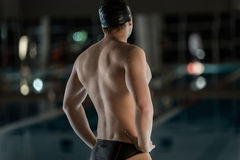 Rear view of a male swimmer Royalty Free Stock Images
