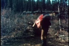Rear view of man carrying carcass through wilderness stock video footage