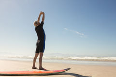 Rear view of man exercising while standing by surfboard Stock Photos