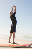 Rear view of man exercising while standing by surfboard Royalty Free Stock Photos