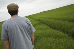 Rear View Of Man In Field Royalty Free Stock Images