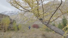 Rear view of man hiker tourist running on trail mountain autumn forest. 4k stock video footage