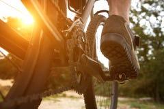 Rear view man peddling bike Royalty Free Stock Image