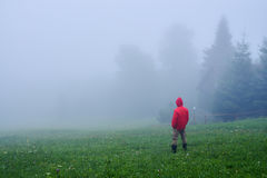 Tourist in waterproof jacket in fog. Rear view of man in red waterproof jacket in fog, Carpathian mountains Royalty Free Stock Photos