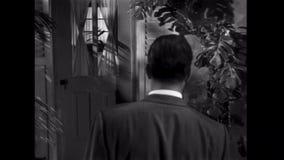 Rear view of man sneaking up to peek through door window stock video footage