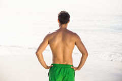 Rear view of man in swim shorts standing on beach Royalty Free Stock Images
