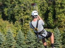 Rear view of a man on a zipline going down a valley in forest stock images