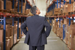 Rear View Of Manager In Warehouse. Rear View Of Manager In distribution Warehouse stock image