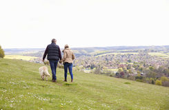 Rear View Of Mature Couple Taking Golden Retriever For Walk Stock Photography