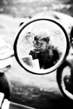Rear view mirror Royalty Free Stock Photo
