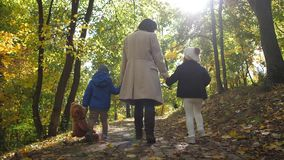 Caring mom and children enjoying walk outdoor stock video footage