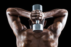 Rear view of muscular man lifting dumbbell behind head Stock Images