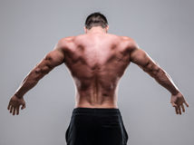 Rear view of a muscular man Stock Photography